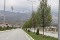 Erzincan'da Ağaçlandırma Çalışması