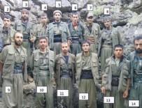 MURAT KARAYILAN - Fotoğraftaki PKK'lı teröristlerin tamamı öldü