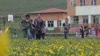 Açık Havada Çiçekler İçerisinde Ders Keyfi