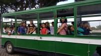 ÇÖMLEKÇI - Buharkentli Öğrenciler Hem Öğrendiler, Hem Eğlendiler