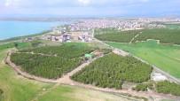BEYŞEHIR GÖLÜ - Beyşehir'e Yeni Mesire Alanı