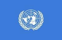 BIRLEŞMIŞ MILLETLER GÜVENLIK KONSEYI - BM Açıklaması 'Suudi Arabistan'ın Listesi Bizi Bağlamaz'