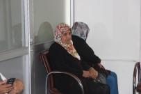 BÖBREK NAKLİ - Bursa'da 2 Hastaya Böbrek 1 Hastaya Karaciğer Piyangosu Çıktı