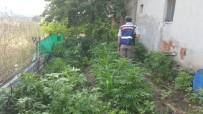 İzmir'de Uyuşturucu Operasyonu Açıklaması 5 Gözaltı