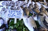 BALIKÇI ESNAFI - Ramazanda Balıkçılar Sinek Avlıyor
