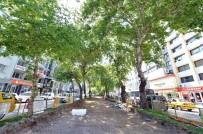 ŞAIR EŞREF - Tramvayda Yaz Maratonu Başlıyor