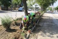 Turgutlu'da Refüjler Güllerle Donatılıyor