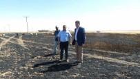 SEL BASKINI - Harran'da 300 Dekar Hububat Ekili Alan Yandı