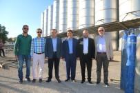 CENGIZ AYDOĞDU - AK Parti Aksaray Milletvekilleri Projeleri İnceledi