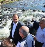 İNCİ KEFALİ - Bakan Yardımcısı Çiftci Balık Göçünü İzledi