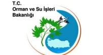ELEKTRİK ENERJİSİ - Bakanlıktan İznik'in Kaderini Değiştirecek Proje