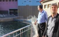 GÜNLÜCE - Dereli Kaplıcaları Onarım Sonrası İftar Programıyla Açıldı