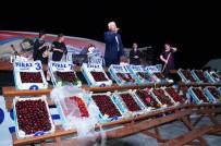 PARA ÖDÜLÜ - Lapseki'de Kiraz Yarışmasında Dereceye Girenler Belli Oldu