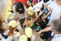 ÇEVRE TEMİZLİĞİ - Odunpazarı'nın Çevreci Köpeği Abdiş