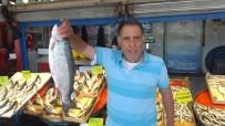OLTA - Ramazan'da Balık Satışı Düştü