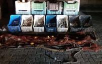 İNCİ KEFALİ - Ahlat'ta 100 Kilo Kaçak Avlanmış İnci Kefali Ele Geçirildi