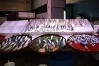 AV YASAĞI - Av Yasağı Balık Tezgahlarını Boş Bıraktı