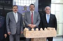 TEMEL ATMA TÖRENİ - Bakanlar Eroğlu Ve Çelik Şanlıurfa'da