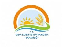 PERSONEL ALIMI - Tarım Bakanlığı personel alacak