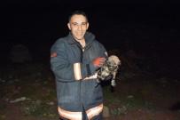 İTFAİYE ERİ - 4 Metrelik Kanala Düşen Yavru Köpeği İtfaiye Kurtardı