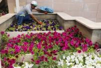 HUZURKENT - Akdeniz, Mevsimlik Çiçeklerle Rengarenk