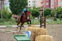 KOMPOZISYON - Jandarmanın Göz Bebeği Eğitimli At Ve Köpeklerin Gösterisi Büyüledi