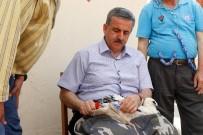 ELEKTRİK DİREĞİ - Manisa'da Leyleklere İlk Halkalama Gerçekleştirildi