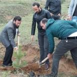 KAPITALIST - Bayburt'ta Başbuğ Hatıra Ormanı Oluşturuldu