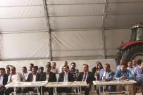 KARBON - Sungurlu'da Tarla Günü Yapıldı
