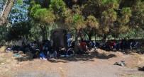 Çanakkale'de 59 Göçmen Ege Denizi'ne Açılamadan Yakalandı