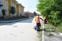 ÇAMKÖY - Düzce Belediyesi Çamköy Mahallesini Temizliyor