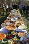 TAFLAN - Ordu'nun Bitkileri 'Ihlamur Festivali'nde