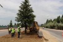 ENERJİ TASARRUFU - Seydişehir'de Damlama Sulama Hattı Yenileme Ve Çimlendirme Çalışması