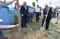 ŞAFAK BAŞA - Tekirdağ'da Ağaçlandırma Etkinliği