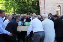 İSRAFİL KIŞLA - CHP Milletvekili Bayraktutan'ın Acı Günü