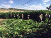 ASKERLİK KANUNU - Teröristlere Ait Mağara, Sığınak Ve EYP'ler Teker Teker İmha Ediliyor