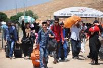 Vatan Hasretiyle Akın Akın Suriye'ye Gidiyorlar