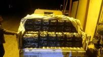 İNCİ KEFALİ - Ahlat'ta 1,5 Ton Kaçak Avlanmış Balık Ele Geçirildi