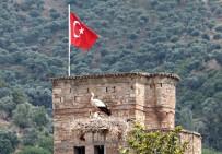 MILLI PARKLAR GENEL MÜDÜRLÜĞÜ - Aydın'da Leylek Sayımı Ve Halkalaması Yapıldı