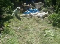 KAPAKLı - Bitlis'te 2 Ton Amonyum Nitrat İmha Edildi