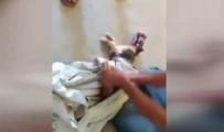 KUZEY AFRIKA - Kediyi Ölümden Böyle Kurtardılar