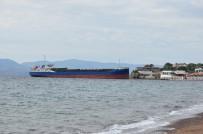 ÇANAKKALE BOĞAZı - Yük Gemisi Plajda Karaya Oturdu
