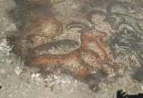 KAZMA KÜREK - Çiftçiler Tarlada Tarihi Mozaik Buldu