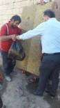 Patnos'ta Dar Gelirli 200 Aileye Gıda Paketi Dağıtıldı