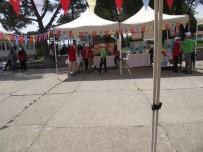 Balya Koyuneri Ortaokulunda Bilim Fuarı Açıldı