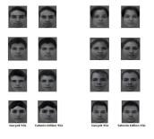 İNSAN YÜZÜ - Bilim Adamları Beyin Dalgalarını Okuyarak Yüz Tanımayı Başardı