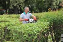 Burhaniye'de Yeşil Alanlar Artıyor