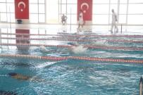 MEHMET DEMIR - Diyarbakır'da Okullararası Yüzme Müsabakaları Yapıldı