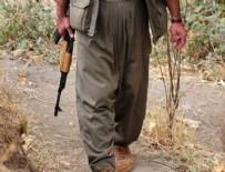 PKK - Hakkari'de teröristler teslim oldu