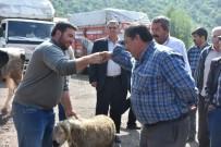 MEHMET METIN - Kızılcahamam'da Canlı Hayvan Pazarı Açıldı